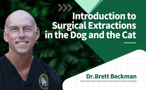 brett_02_Introduction to Surgical Extractions in the Dog and the Cat