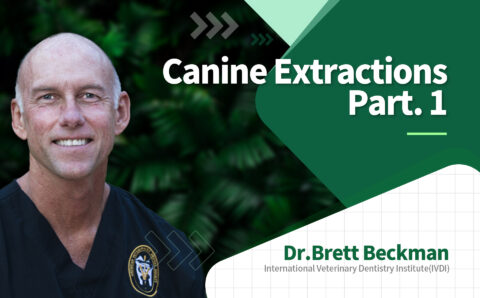 brett_03_Canine Extractions Part.1