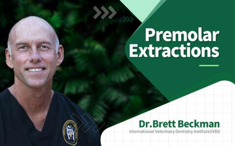 brett_05_Premolar Extractions