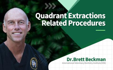 brett_07_Quadrant Extractios Related Procedures