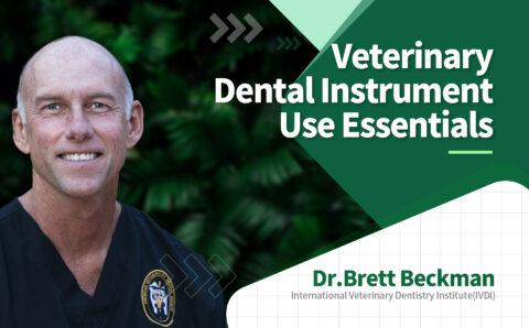 brett_08_Veterinary Dental Instrument Use Essentials